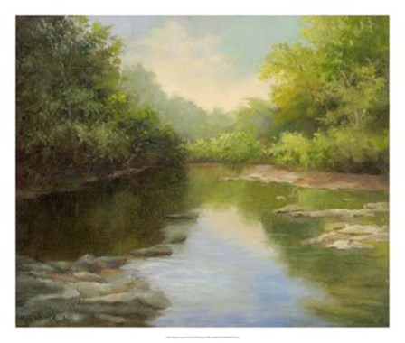 O'Bannon Summer Creek by Mary Jean Weber art print