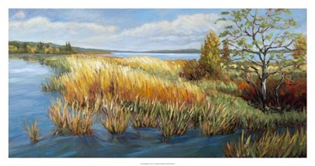 Marsh Edge by A.A. Pfannmuller art print