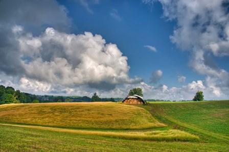 Hay Field by Bob Rouse art print
