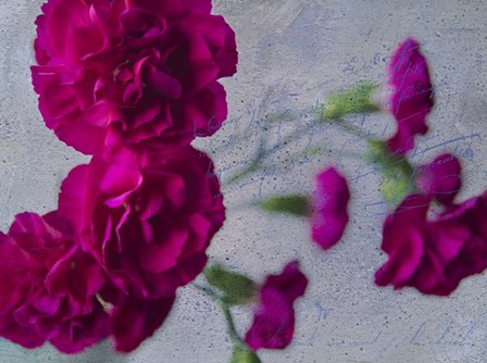 Vibrant Carnations by Bob Rouse art print