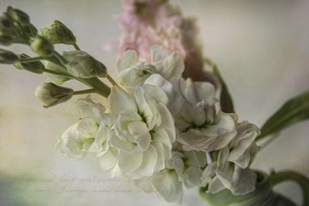 White Spring by Bob Rouse art print