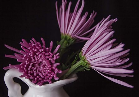 Small White Vase by Bob Rouse art print
