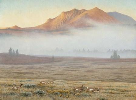Mackenzie Passage by Michael Budden art print