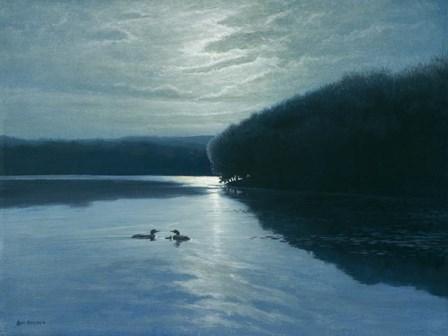 Moonlight Loons by Michael Budden art print