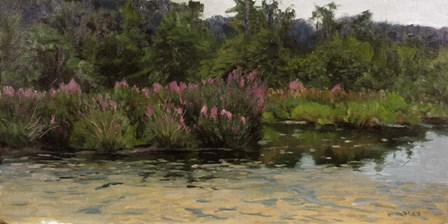 Purple Lustrife - Townsend's Pond by Michael Budden art print