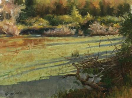 Pond Shadows by Michael Budden art print