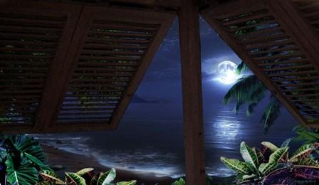 Tropical Dream Moon View by Murray Henderson Fine Art art print