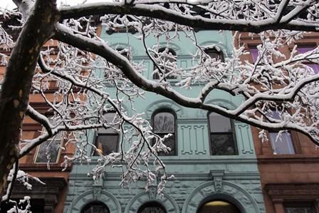 Snowstorm Brownstones Branches by Robert Goldwitz art print