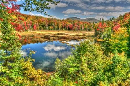Adirondack Pond by Robert Goldwitz art print