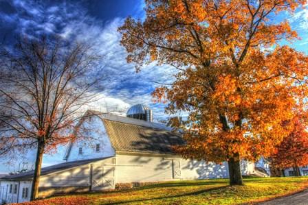 Autumn Barns by Robert Goldwitz art print