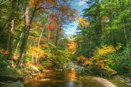 Autumn Brook by Robert Goldwitz art print
