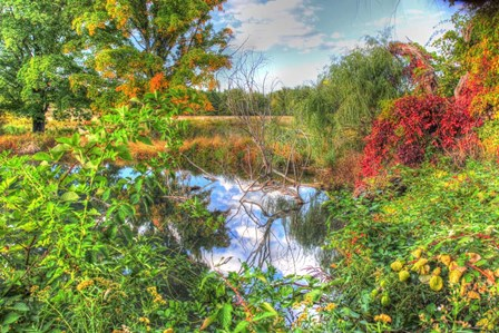 Autumn Pond by Robert Goldwitz art print