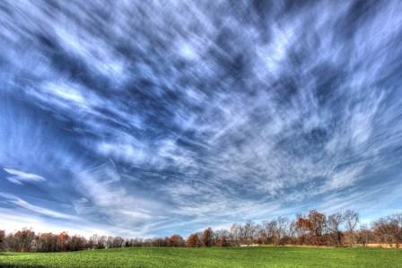 Field And Sky Autumn by Robert Goldwitz art print