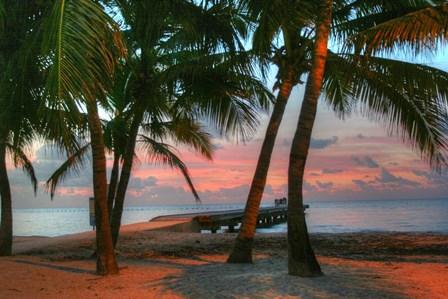 Key West Sunrise V by Robert Goldwitz art print