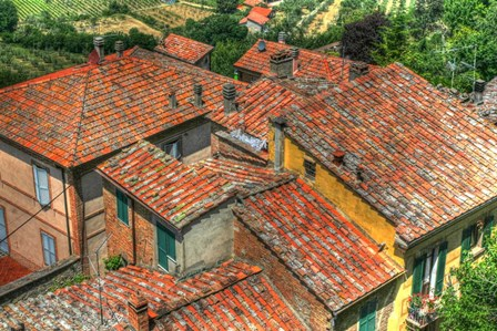 Tuscan Roofs by Robert Goldwitz art print