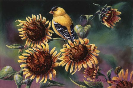 Sunflowers by Wanda Mumm art print
