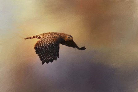 Coming In For The Evening by Jai Johnson art print