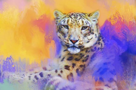 Colorful Expressions Snow Leopard by Jai Johnson art print