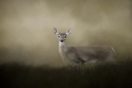 Young and Alert by Jai Johnson art print
