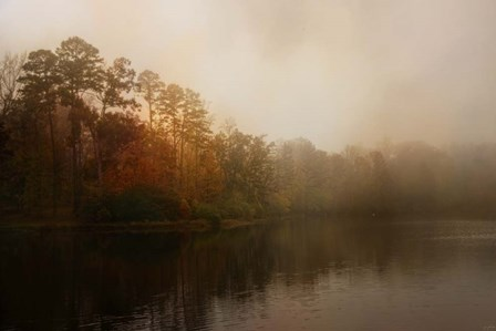 Foggy Morning At Lake LaJoie by Jai Johnson art print