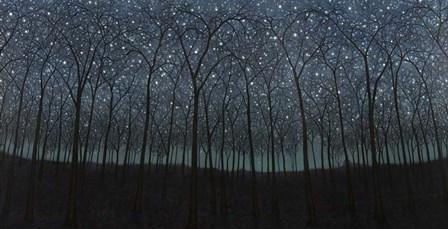 Starry Trees by James W. Johnson art print