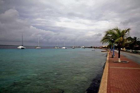 Bonaire 1 by J.D. McFarlan art print