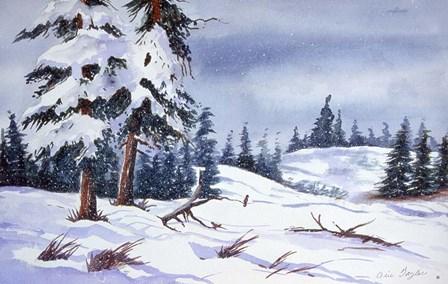 Snow by Arie Reinhardt Taylor art print