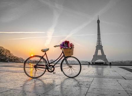 Bike in Paris by Assaf Frank art print
