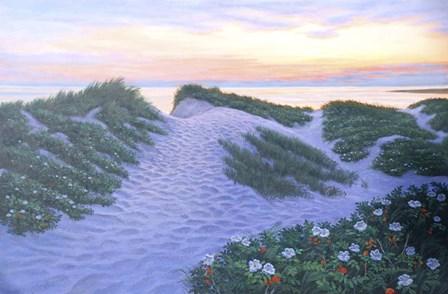 After Glow Dunes by Bruce Dumas art print
