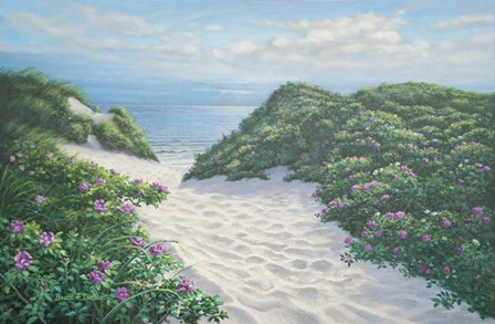 Herring Cove Dunes by Bruce Dumas art print