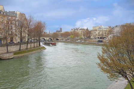 Seine River In Paris Center by Cora Niele art print