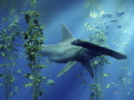 Hammerhead by Daniel Eskridge art print