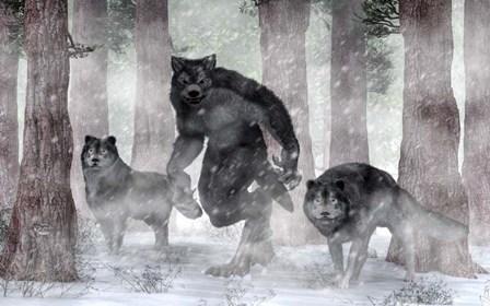 Werewolf And Wolves by Daniel Eskridge art print