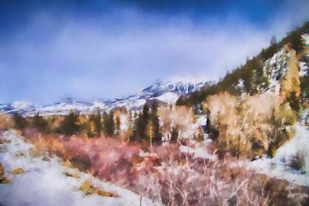 Winter Beginnings In Colorado by Jai Johnson art print