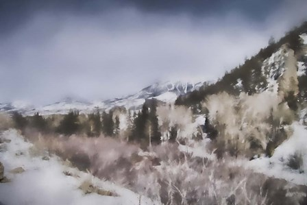 Winter Impressions In Colorado 2 by Jai Johnson art print