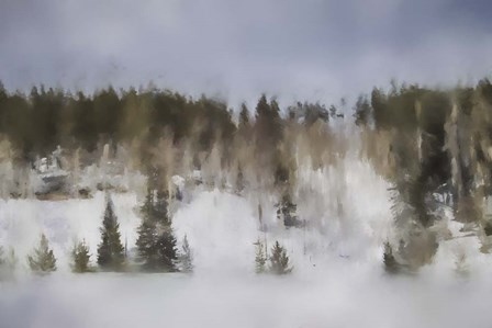 Winter Impressions In Colorado 8 by Jai Johnson art print