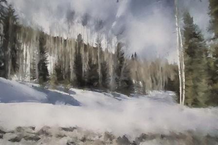 Winter Impressions In Colorado 9 by Jai Johnson art print
