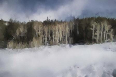 Winter Impressions In Colorado 11 by Jai Johnson art print