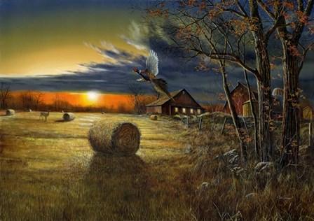 Autumn Harvest 1 by Jim Hansel art print