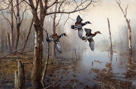 Backwater by Jim Hansel art print