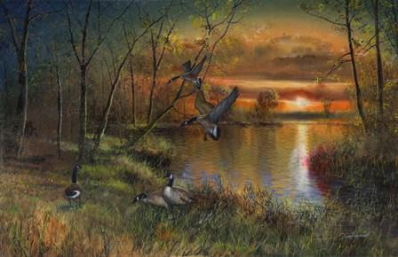 Evening Refuge by Jim Hansel art print