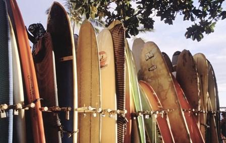 Long Boards Waikiki by Joe Felzman Photography art print