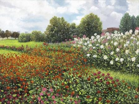 Fleurs du jardin by Kevin Dodds art print