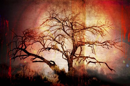 Cottonwood Tree Part 10 by LightBoxJournal art print