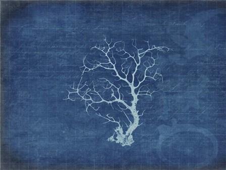 Gypsy Blue Cyanotype V2 by LightBoxJournal art print