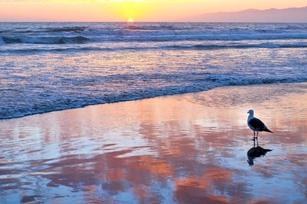 Venice Beach Sunset by Lori Hutchison art print