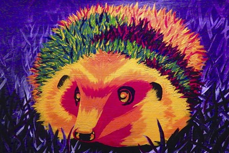 Colorful Hedgehog by Lucy Loo Wales art print