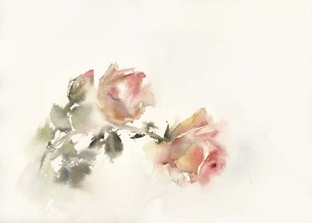 Rose in Bloom by Sophia Rodionov art print