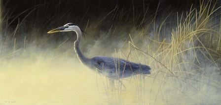 Fishing The Mist by Michael Budden art print