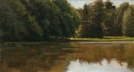 Summer Light - White Pine Rd Pond by Michael Budden art print